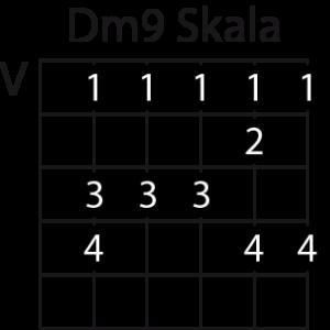 Dm9-Skala
